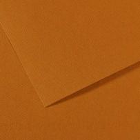 Бумага для пастели Mi-Teintes, А4, 502